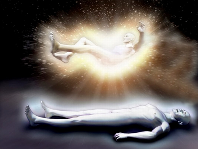 Inmortalidad Cuántica