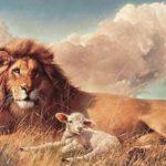 El leon y el cordero