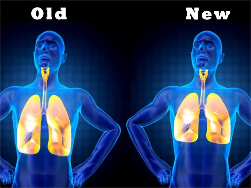 Pulmones - Old-New